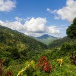 Jamaica's top 5 natural highlights