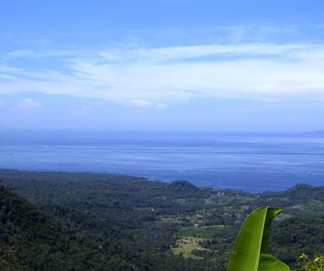 Manggis Bali