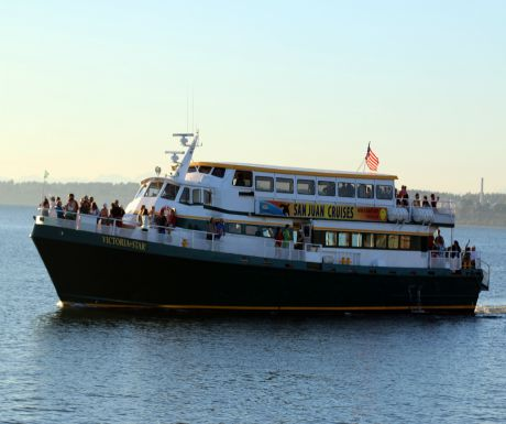 san juan cruises