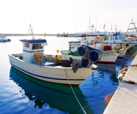 Javea Fishing Harbour Spain