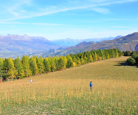 Walking in the Alps in Autumn