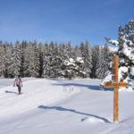 3 great reasons why you should try cross country skiing  this Winter