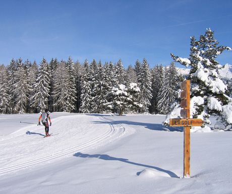 Cross Country Skiing in the Southern Alps