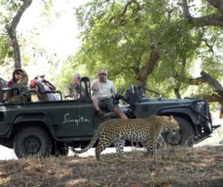 Game drive from Singita Castleton