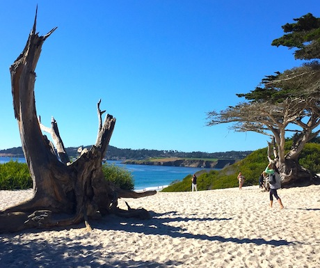 Save Time to Walk the Carmel Beach