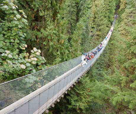 Vancouver_capilano_park_bridge