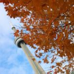 5 can't miss Toronto experiences