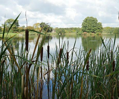 Dearnford Lake