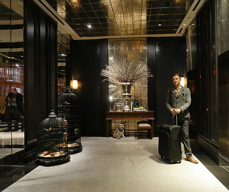 Rosewood London lifts