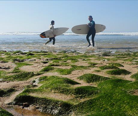 Surfers at Ribeira dIlhas