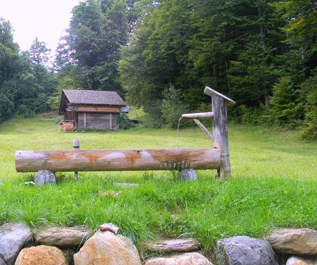 Grindlewald Cabin
