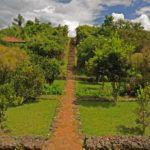 5 perks of luxury safari lodging