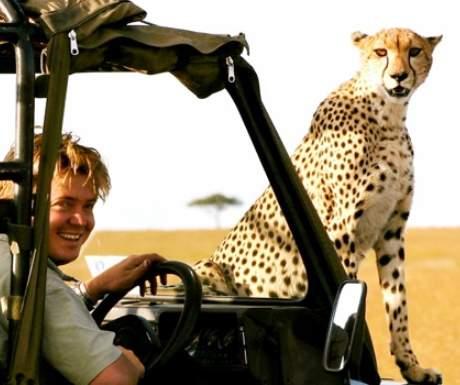 Richards Camp Masai Mara cheetah on game viewing vehicle