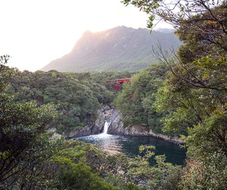 Beautiful-Yakushima