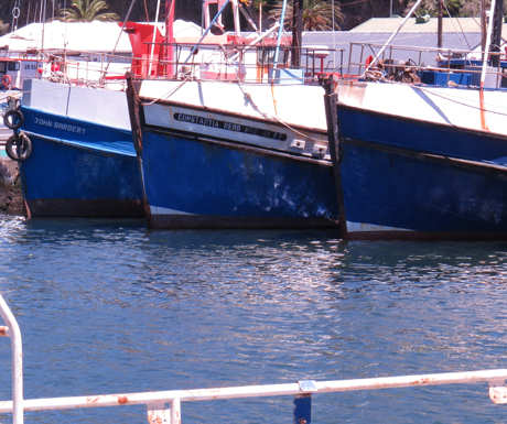Various boats in harbour
