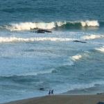 Top 10 beaches in South Africa