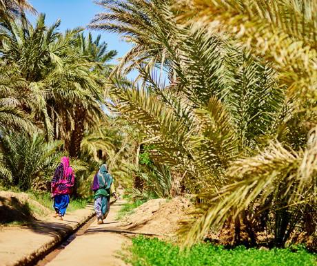berber-lifestyle