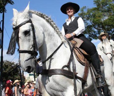 The horse parade