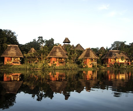 Amazon - Napo huts