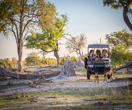 Duma Tau game drive