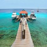 Bon bini to Bonaire - my top 5 to dos