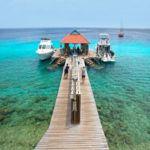 Bon bini to Bonaire - my top 5 to dos