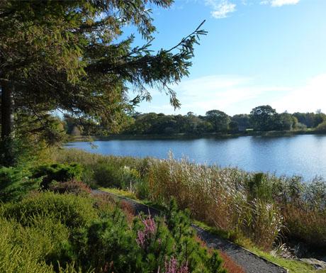 Dr Neils Garden in Edinburgh