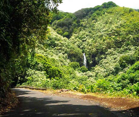 Hana Road with wailua falls in distance