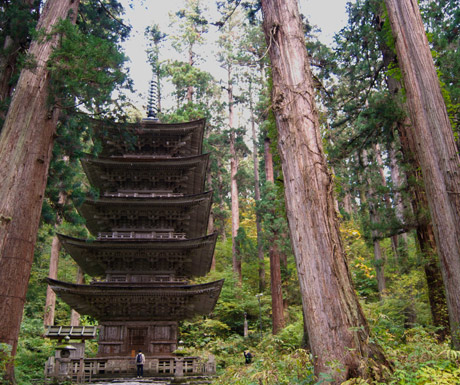 Mount-Haguro's-forest-pagoda