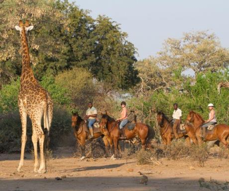 Riding Safari - Mashatu Camp - Tuli Area