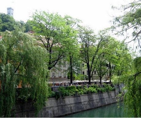 Ljubljanica river Slovenia