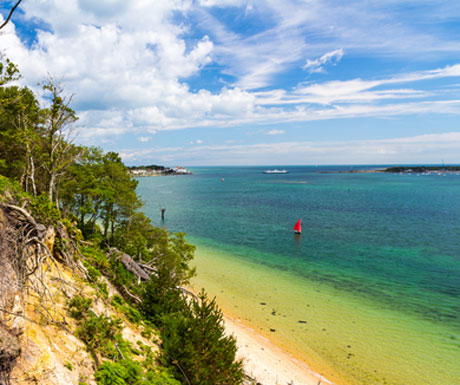 Brownsea Island Poole