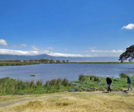 Hiking in Ngorongoro Crater