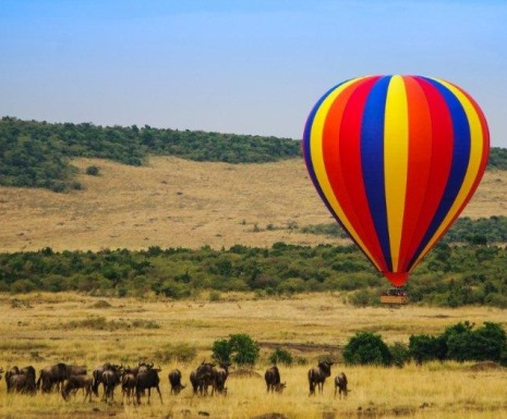 Ballooning over the Masai Mara from Governors Camp