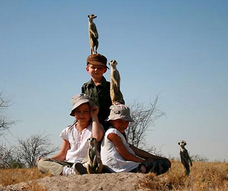 Meerkat lookout from Camp Kalahari in Botswana