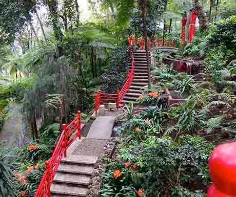 Monte Tropical Garden, Madeira