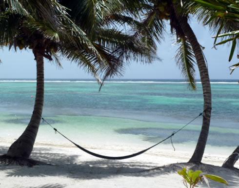 Tranquility Bay Resort, Ambergris Caye