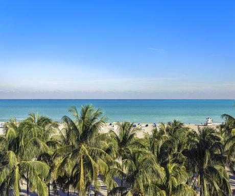 palm beach ocean view
