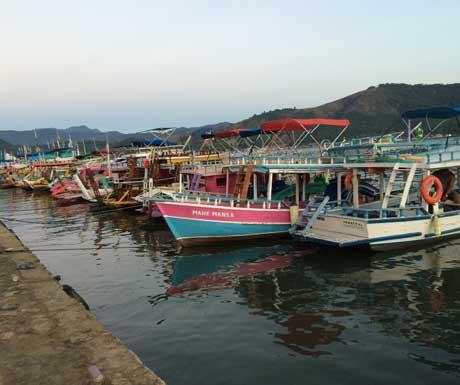 Boats-RSZ