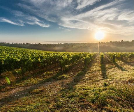 Tuscany Italy celebrity holiday destinations