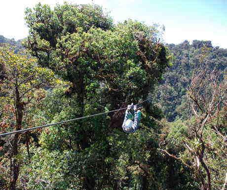 Zip Lining Monteverde