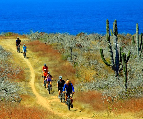 Mountain Bike Tours with Cabo Adventures