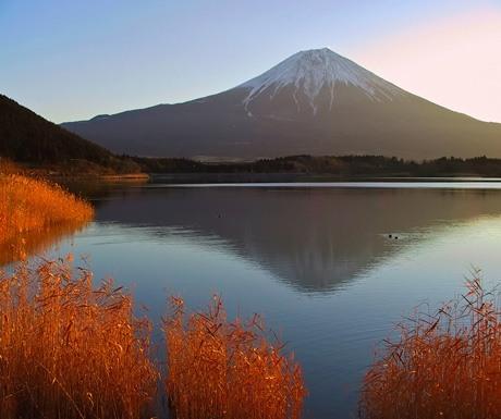 fuji-in-autumn