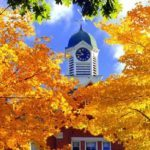 6 unusual things to do during the New England Fall