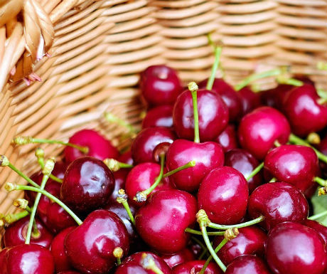 miravet-cherry-festival