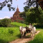 5 reasons to travel to Burma in the green season