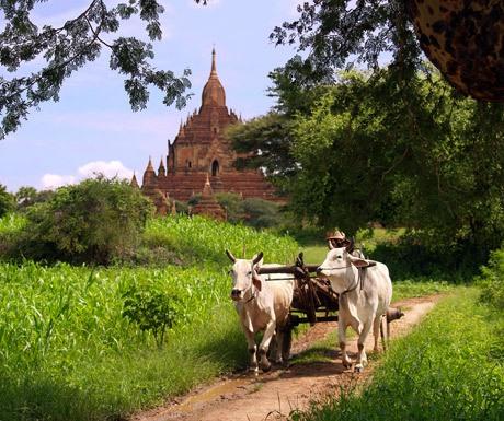 bagan-beautiful-in-the-green-season