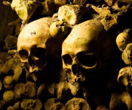 half-term-horrifying-highlights-catacombs