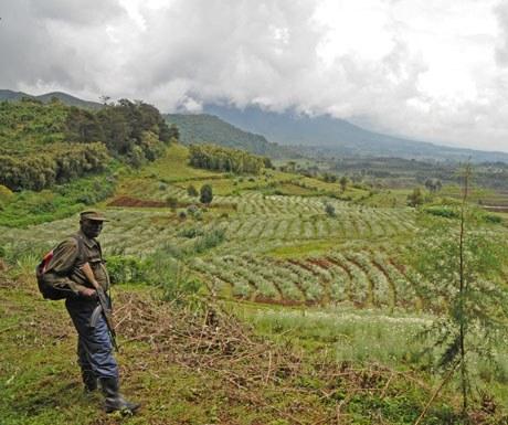 rwanda-ranger