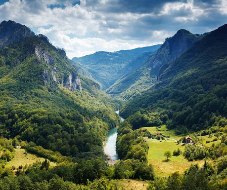 tara-river